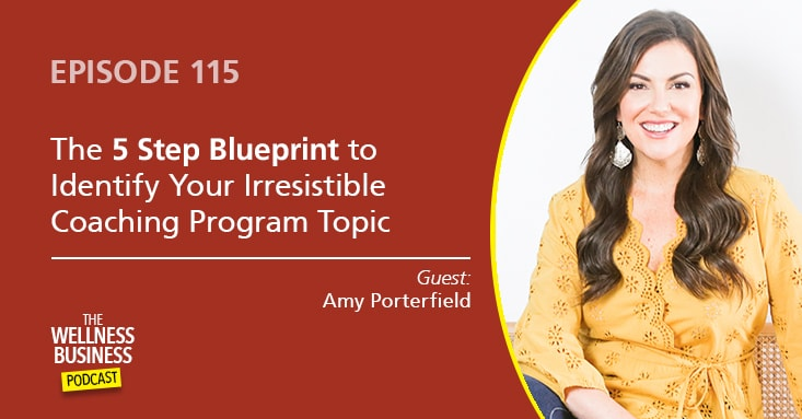 5 Steps to Identify Your Irresistible Coaching Program Topic with Amy Porterfield